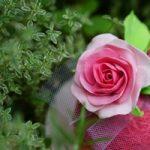 バラの花をつくる、癒しの手仕事